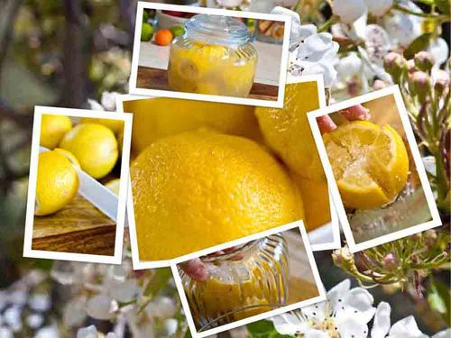 Lemon collage.jpg